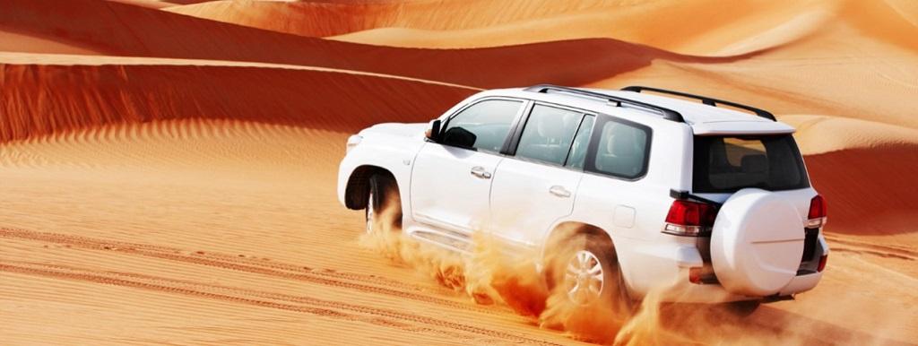 Desert Safari Experience