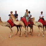 Dubai Desert Safari Services