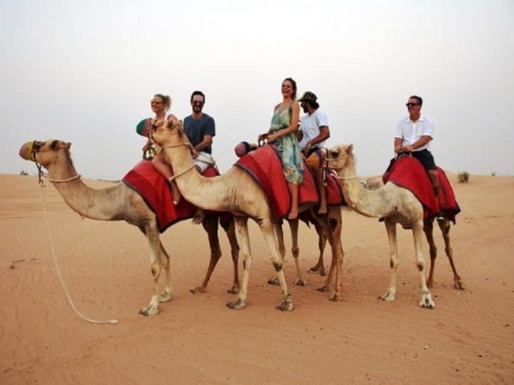 Dubai Desert Safari Services Offer Adventurous Journey for the Tourists