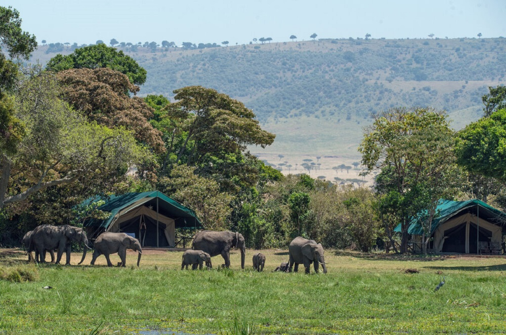 Exploring Nairobi