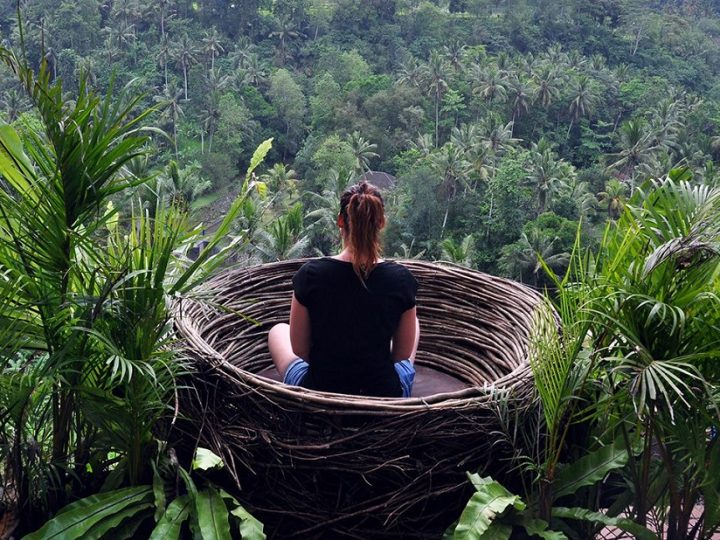 Exploring Bali's Kratom and Other Interesting Forests